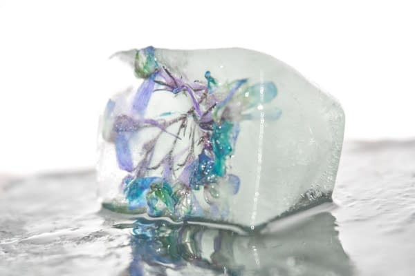 Summer activities for toddlers - flower in an ice block
